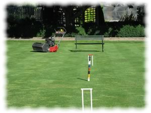 croquet lawn and mower